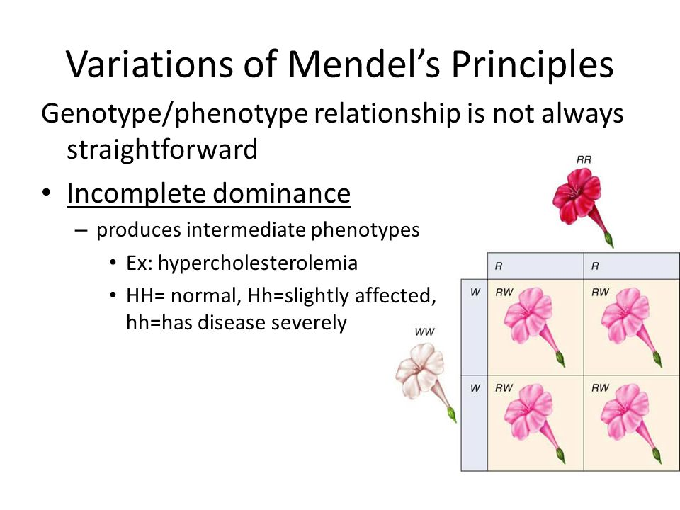 Variations of Mendel's Principles