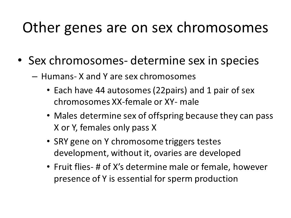 Other genes are on sex chromosomes
