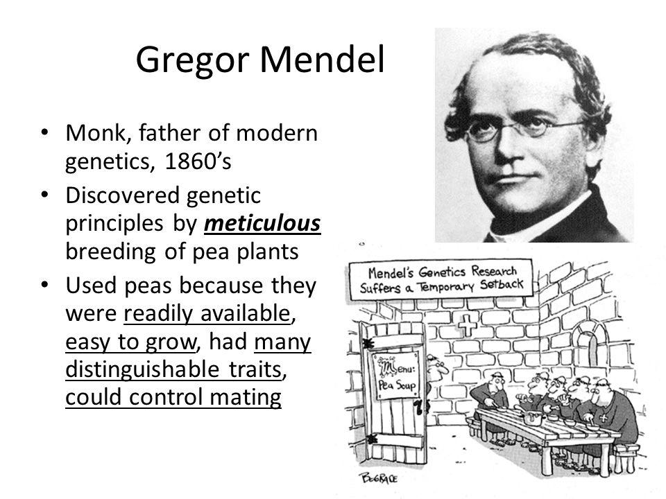 Gregor Mendel Monk, father of modern genetics, 1860's