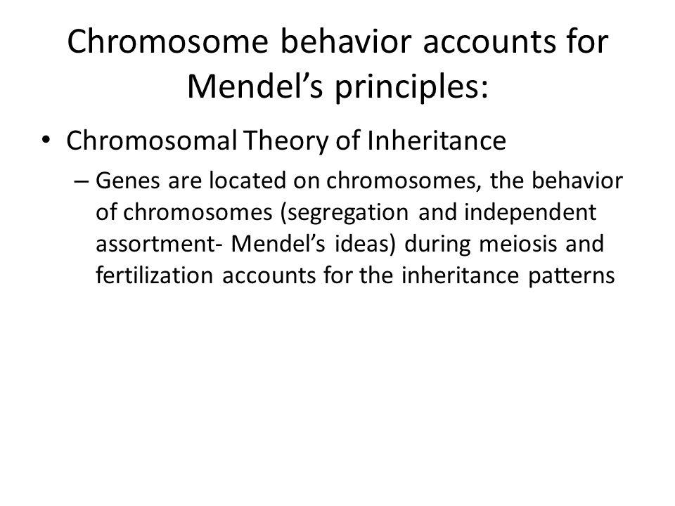 Chromosome behavior accounts for Mendel's principles: