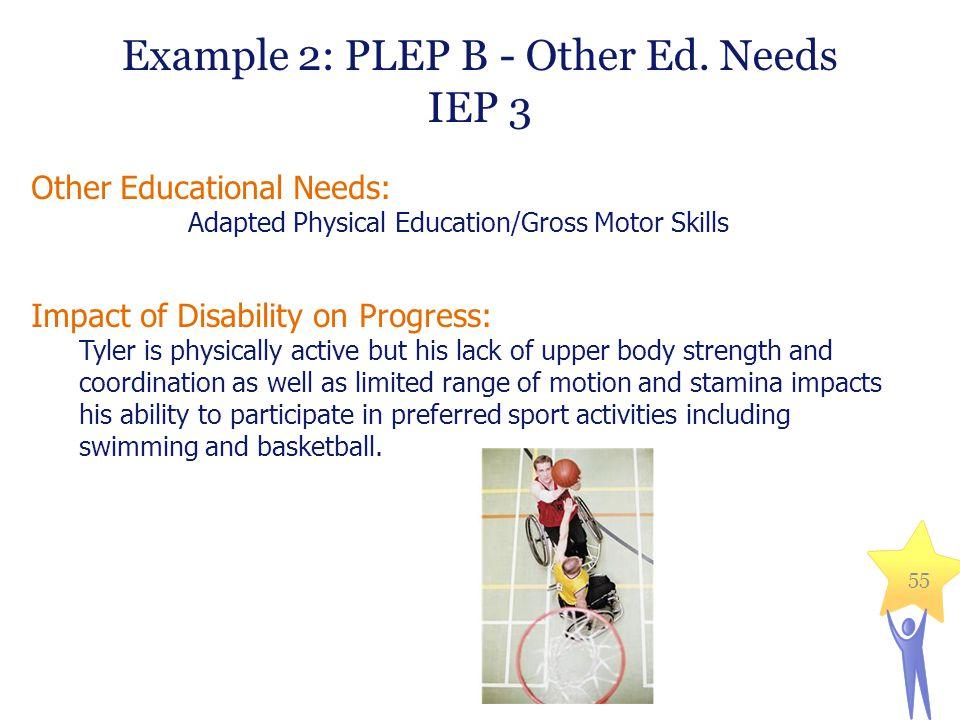 Example 2: PLEP B - Other Ed. Needs IEP 3