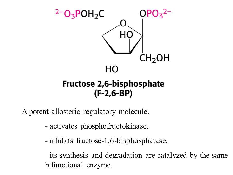 A potent allosteric regulatory molecule.