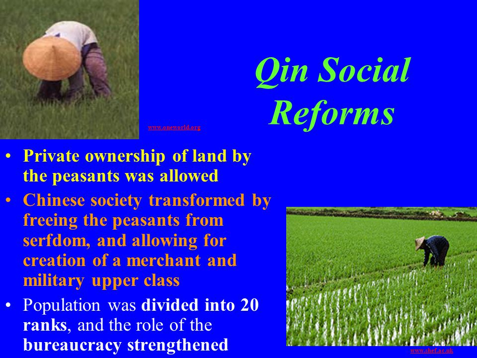 Qin Social Reforms www.oneworld.org. Private ownership of land by the peasants was allowed.