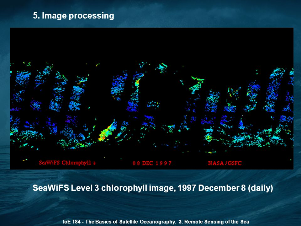 SeaWiFS Level 3 chlorophyll image, 1997 December 8 (daily)