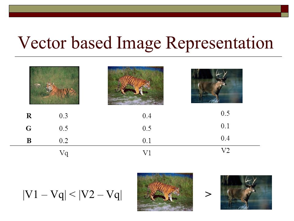 Vector based Image Representation