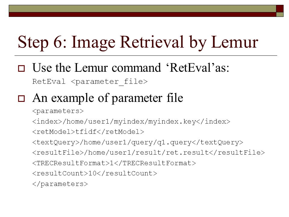 Step 6: Image Retrieval by Lemur