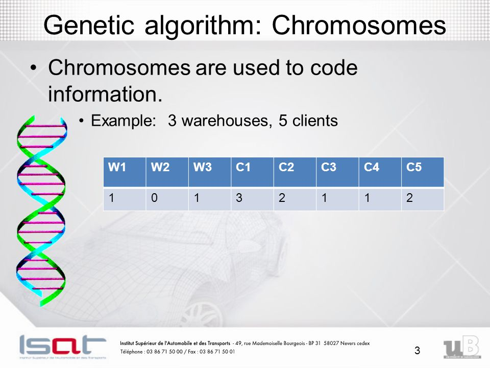 Genetic algorithm: Chromosomes