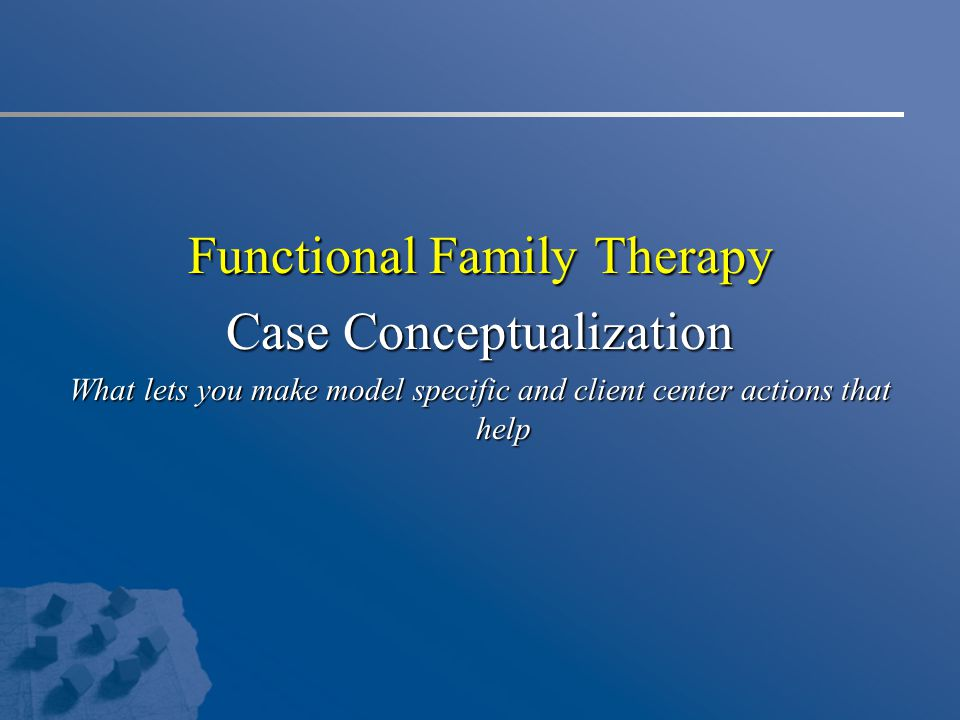 Functional Family Therapy Case Conceptualization