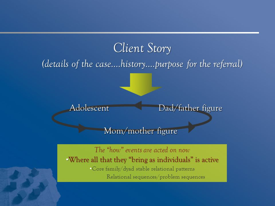 Client Story (details of the case….history….purpose for the referral)