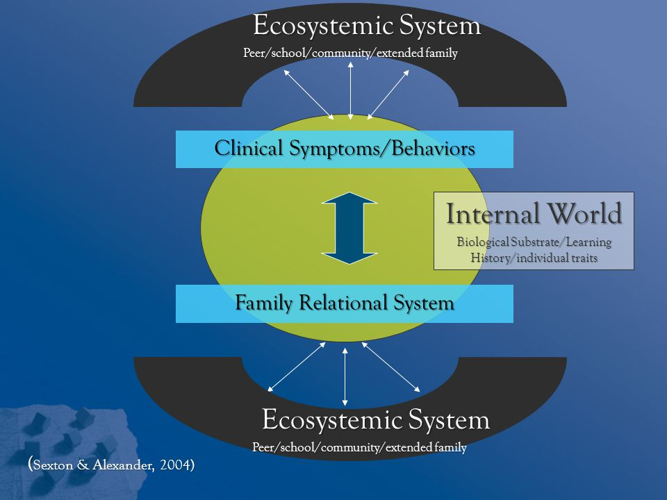Ecosystemic System Internal World Ecosystemic System