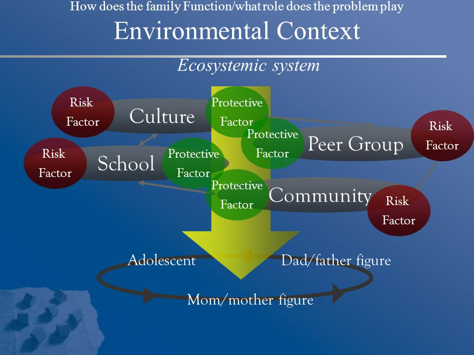 Culture Peer Group School Community Ecosystemic system