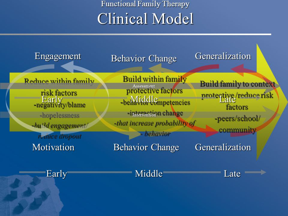 Functional Family Therapy Clinical Model