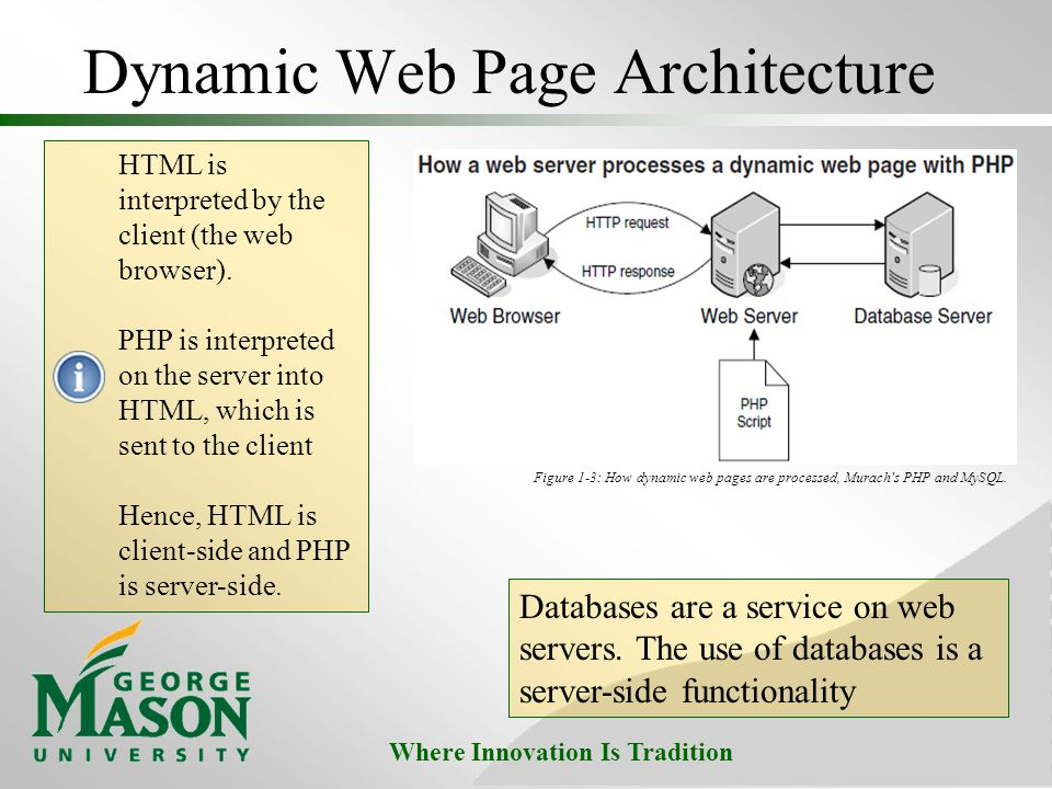 Dynamic Web Page Architecture