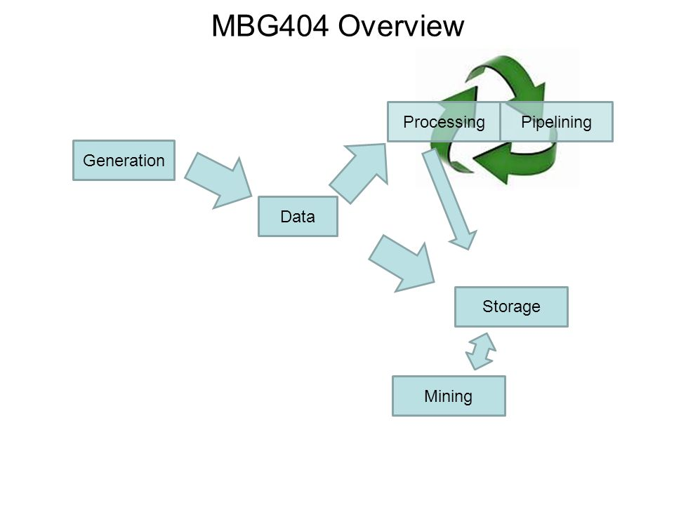 MBG404 Overview Processing Pipelining Generation Data Storage Mining