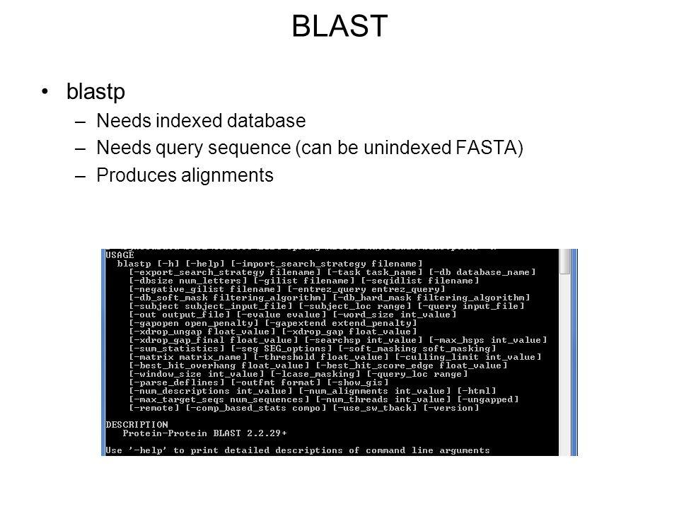 BLAST blastp Needs indexed database