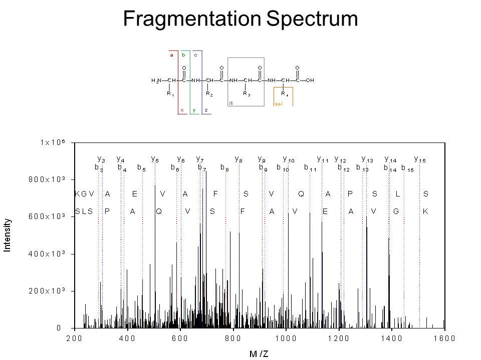Fragmentation Spectrum