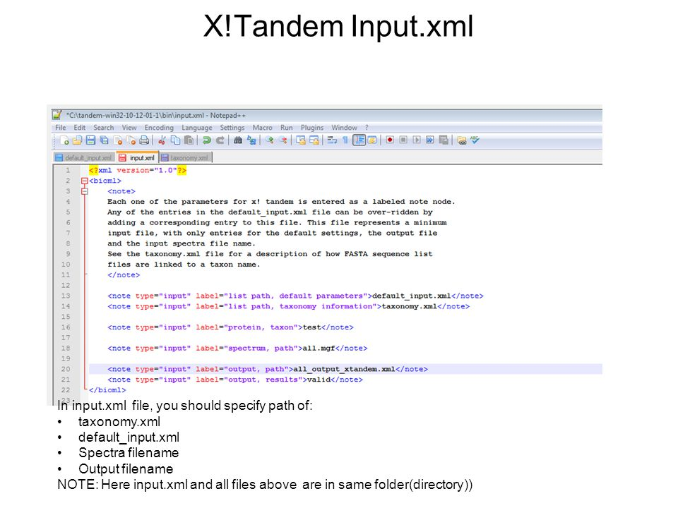 X!Tandem Input.xml In input.xml file, you should specify path of: