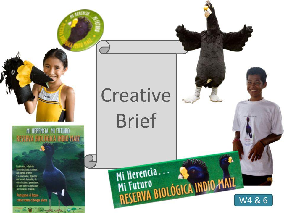 Creative Brief W4 & 6