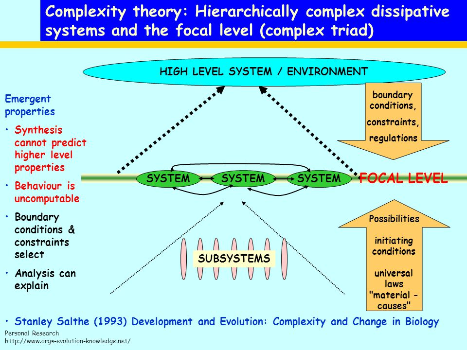 Complexity theory: Hierarchically complex dissipative systems and the focal level (complex triad)