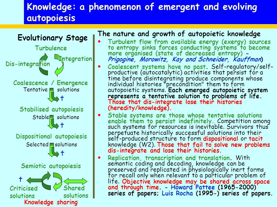 Knowledge: a phenomenon of emergent and evolving autopoiesis