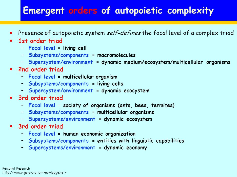 Emergent orders of autopoietic complexity