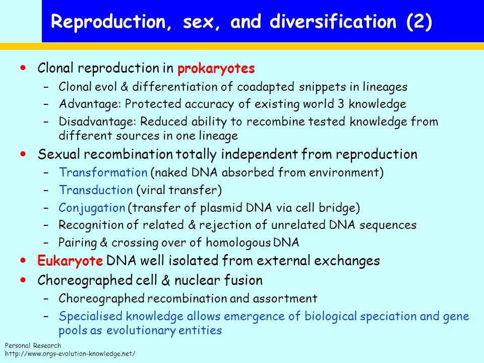 Reproduction, sex, and diversification (2)