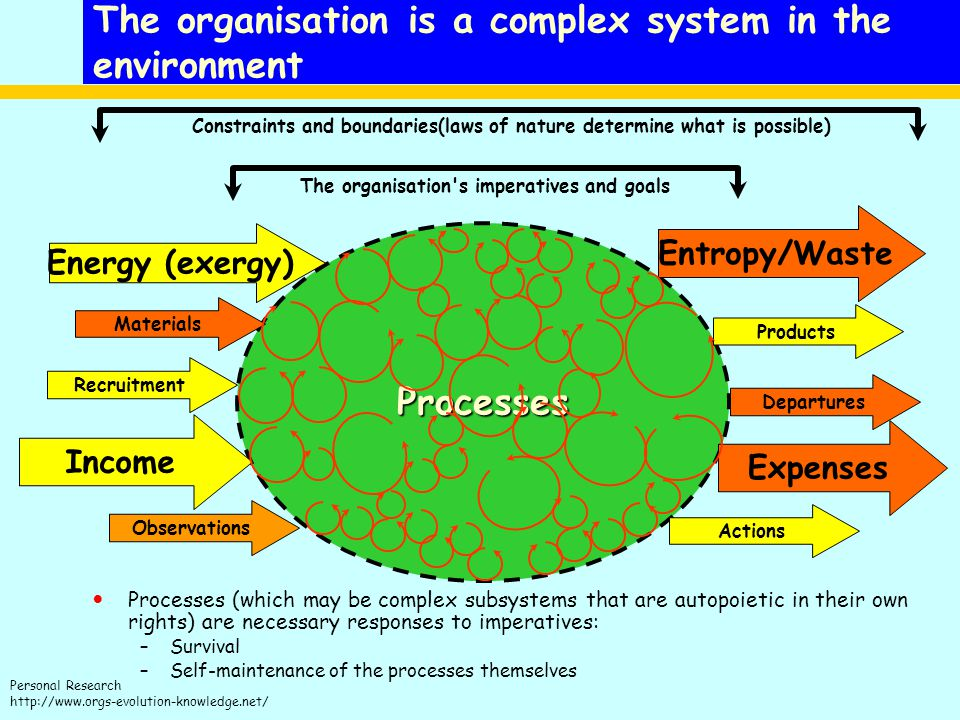 The organisation is a complex system in the environment