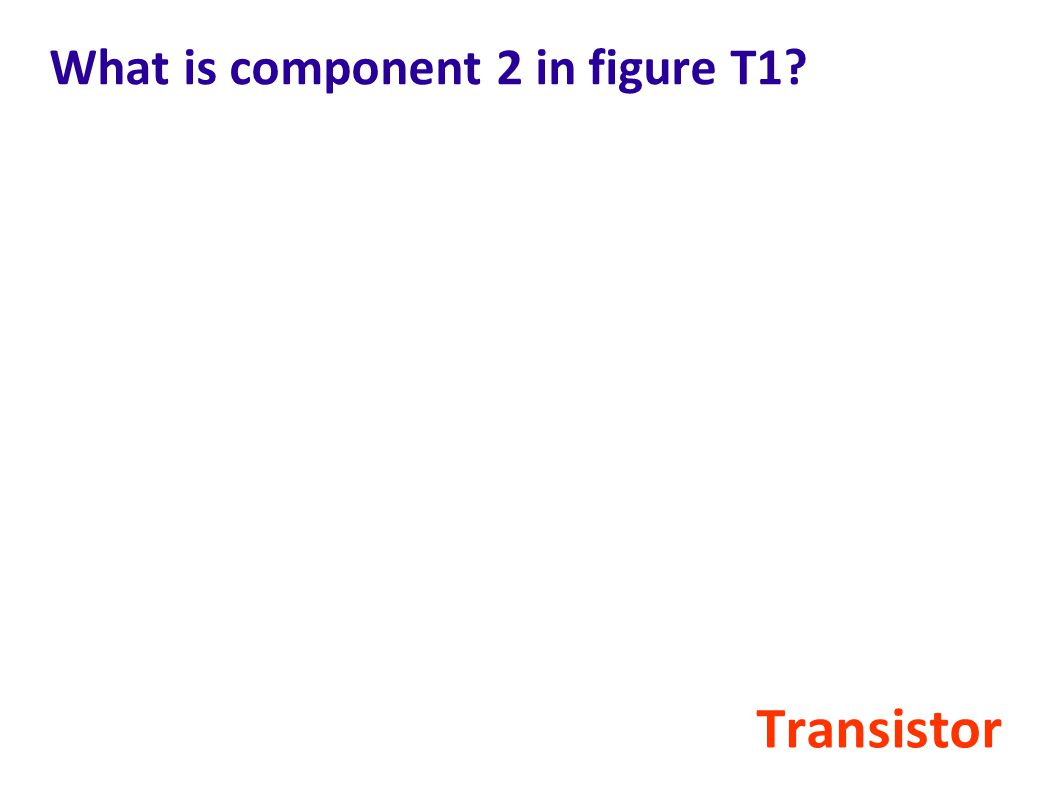 What is component 2 in figure T1