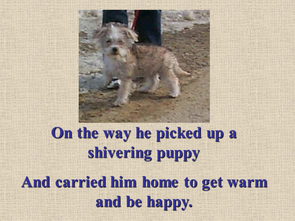 On the way he picked up a shivering puppy