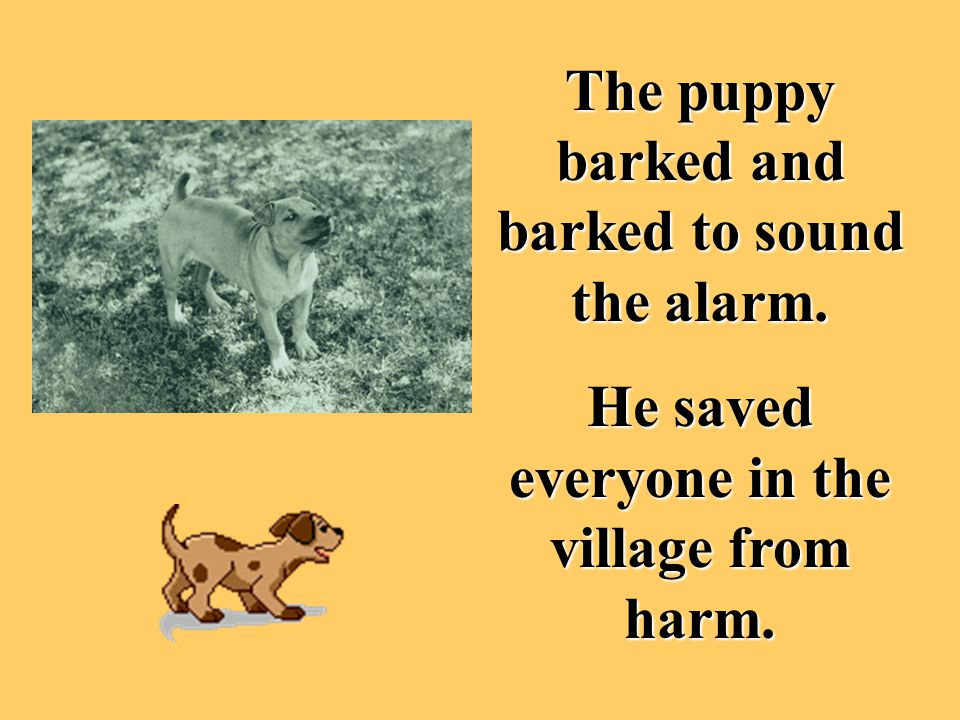 The puppy barked and barked to sound the alarm.