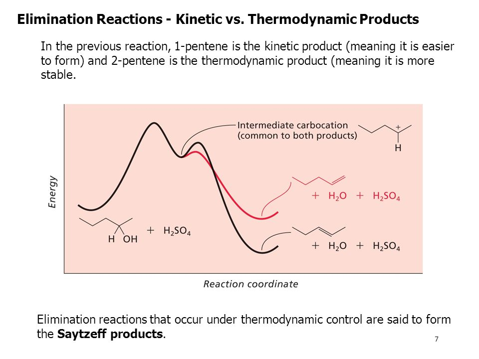 Elimination Reactions - Kinetic vs. Thermodynamic Products
