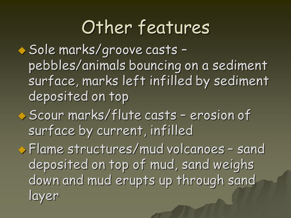 Other features Sole marks/groove casts – pebbles/animals bouncing on a sediment surface, marks left infilled by sediment deposited on top.
