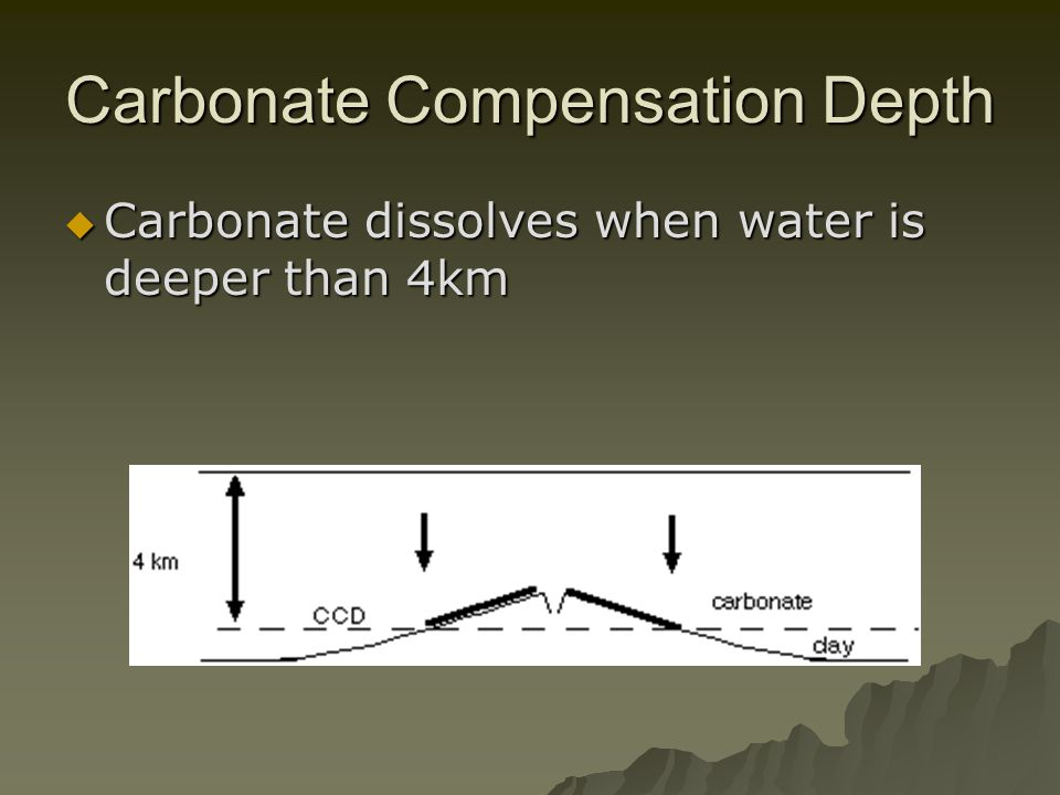 Carbonate Compensation Depth