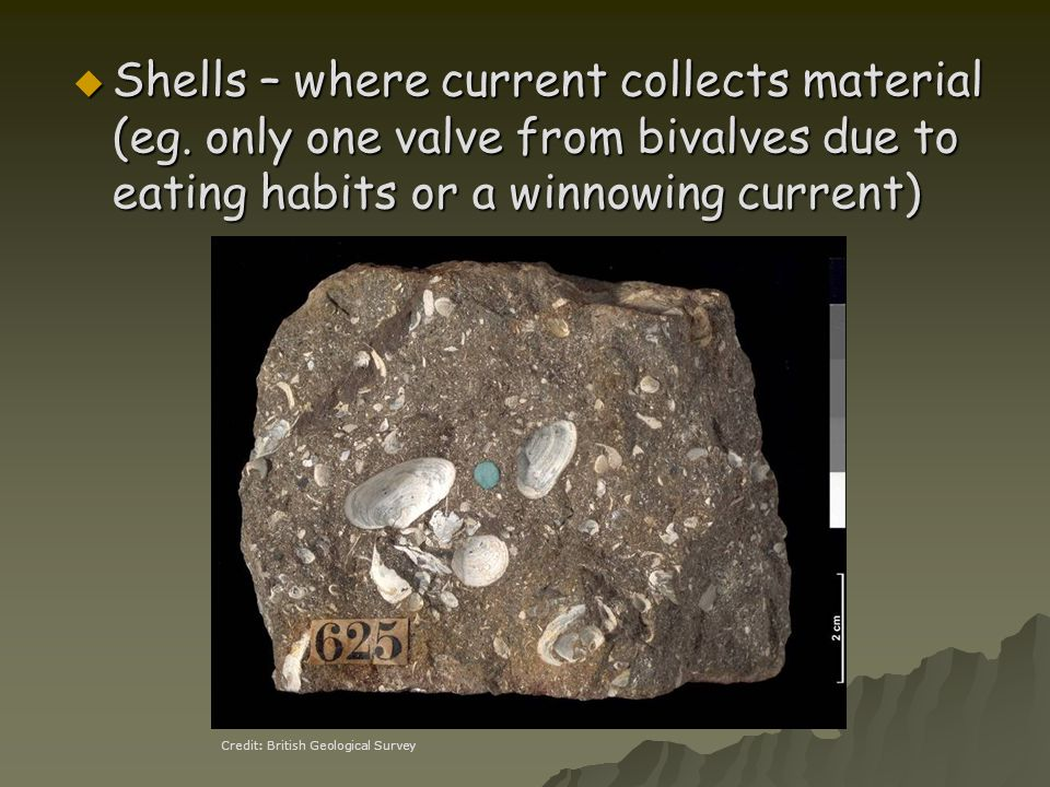 Shells – where current collects material (eg