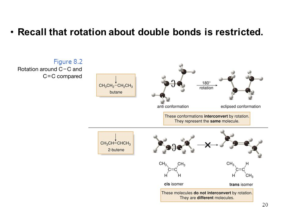 Recall that rotation about double bonds is restricted.