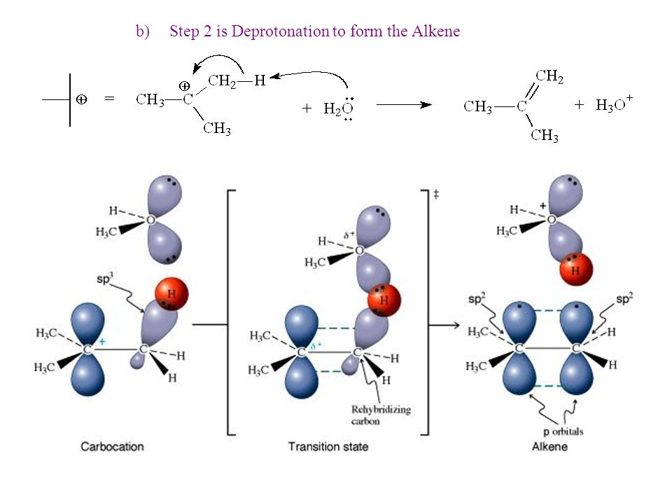 b) Step 2 is Deprotonation to form the Alkene