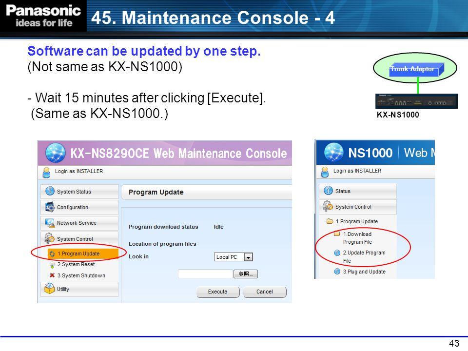 45. Maintenance Console - 4