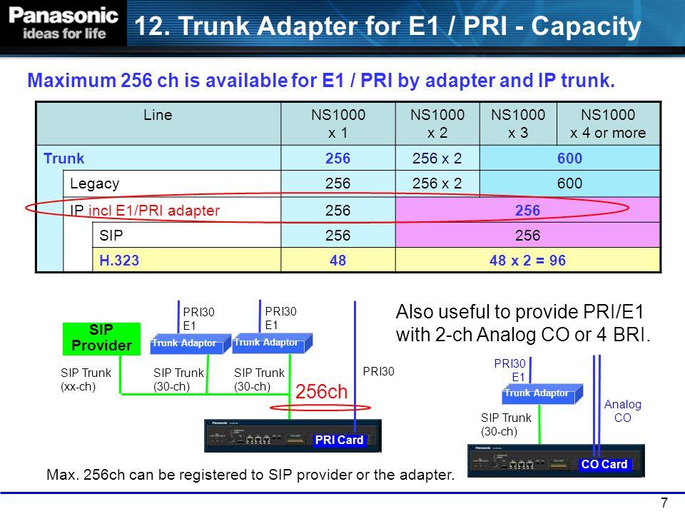 12. Trunk Adapter for E1 / PRI - Capacity