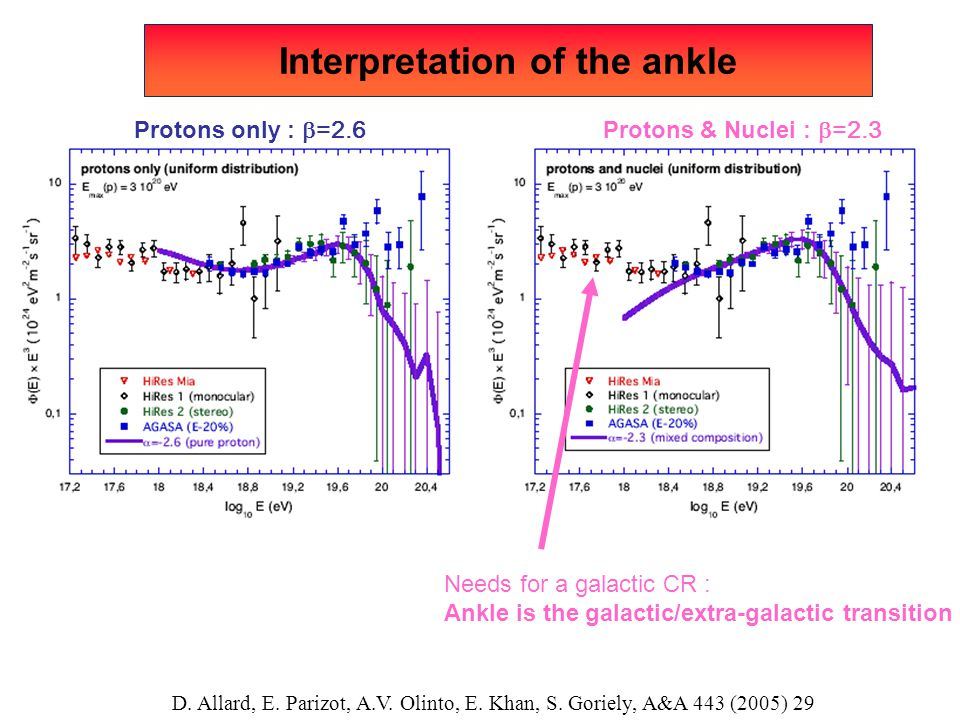 Interpretation of the ankle