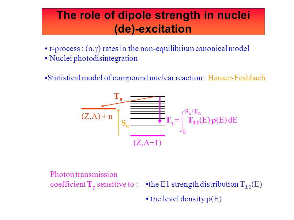 The role of dipole strength in nuclei (de)-excitation