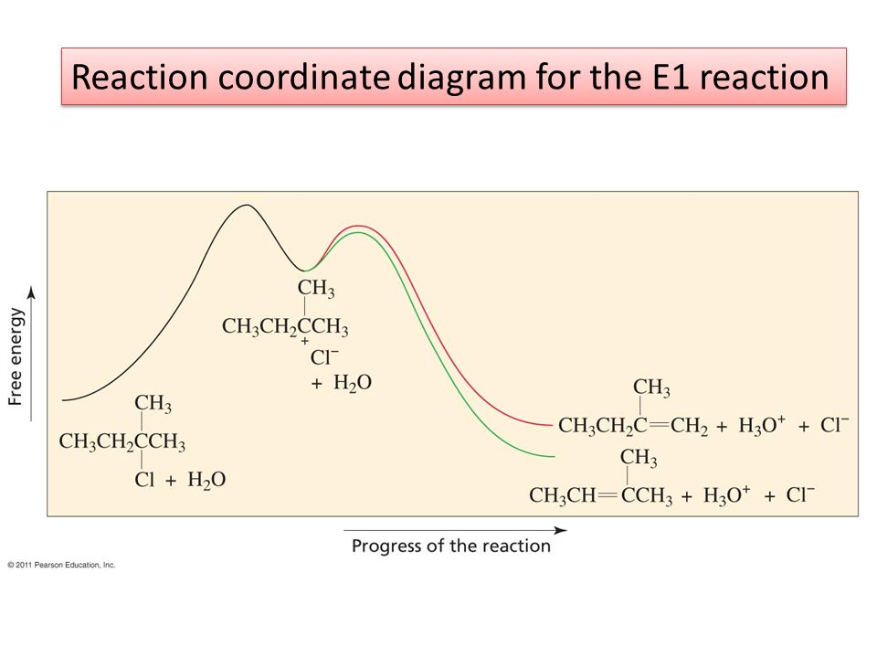 Reaction coordinate diagram for the E1 reaction