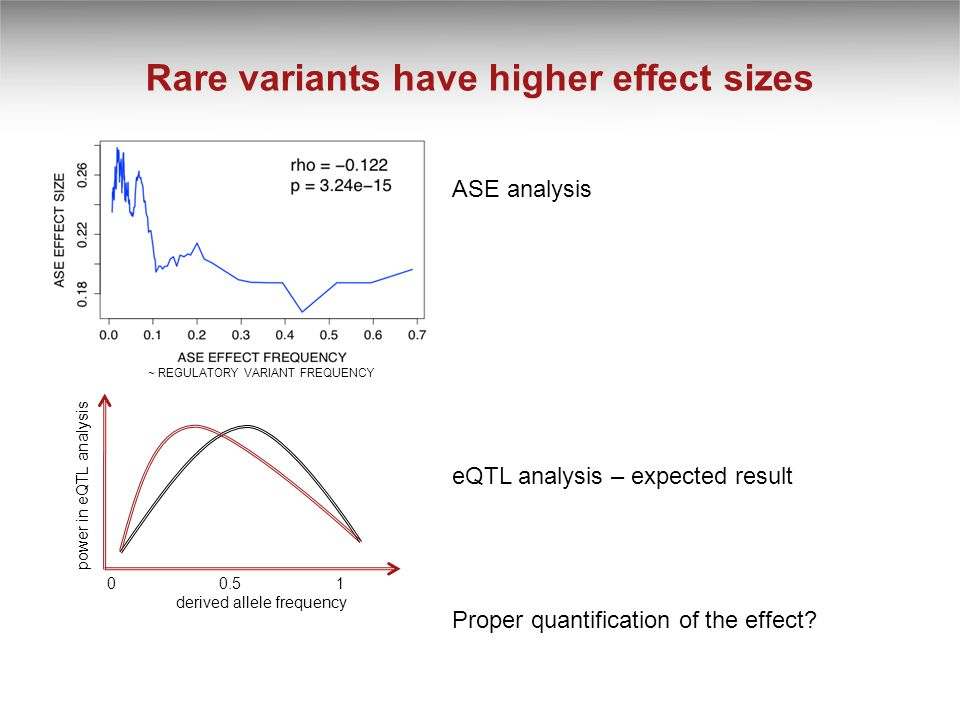 Rare variants have higher effect sizes