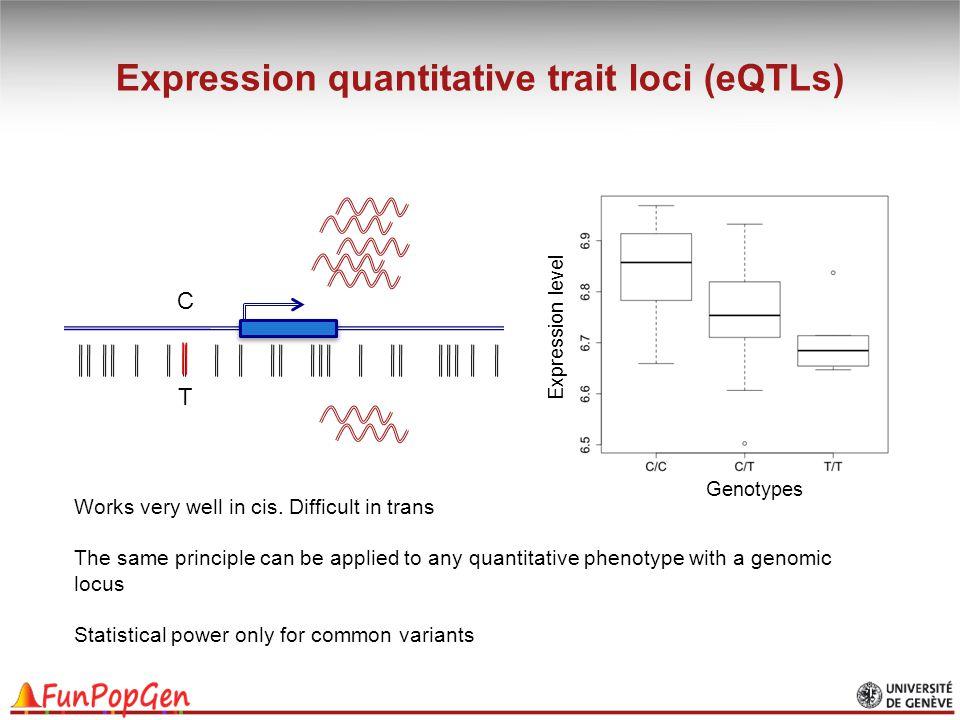 Expression quantitative trait loci (eQTLs)