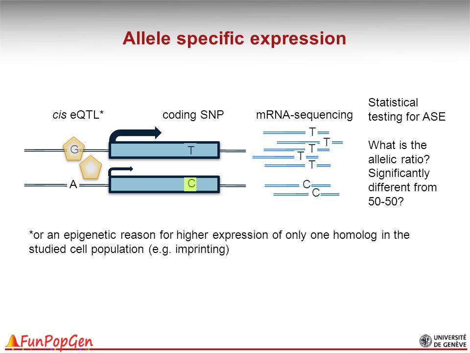 Allele specific expression