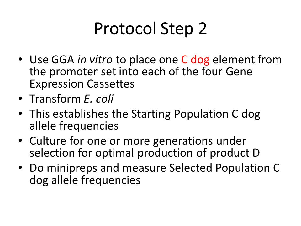 Protocol Step 2 Use GGA in vitro to place one C dog element from the promoter set into each of the four Gene Expression Cassettes.