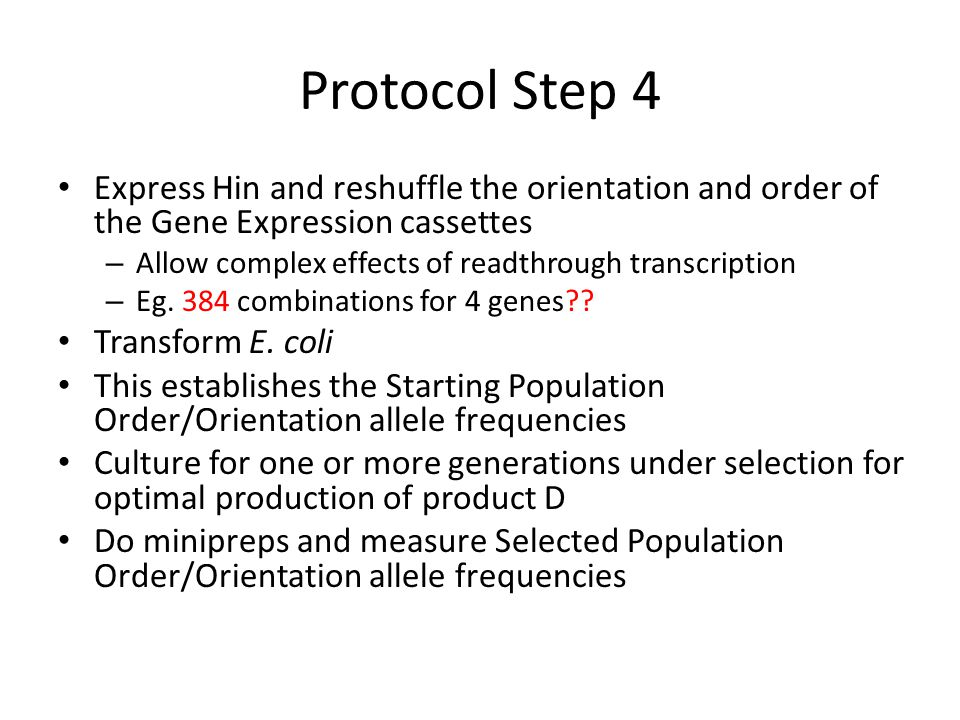 Protocol Step 4 Express Hin and reshuffle the orientation and order of the Gene Expression cassettes.