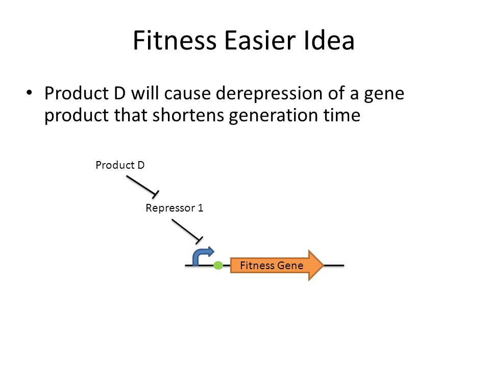 Fitness Easier Idea Product D will cause derepression of a gene product that shortens generation time.