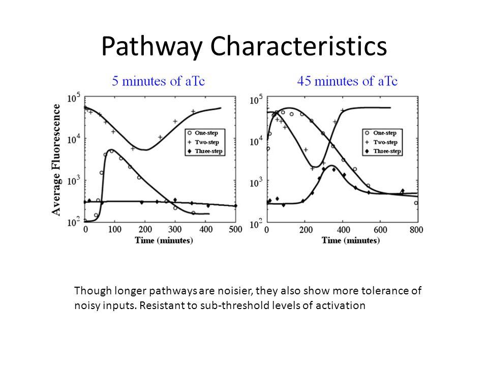 Pathway Characteristics