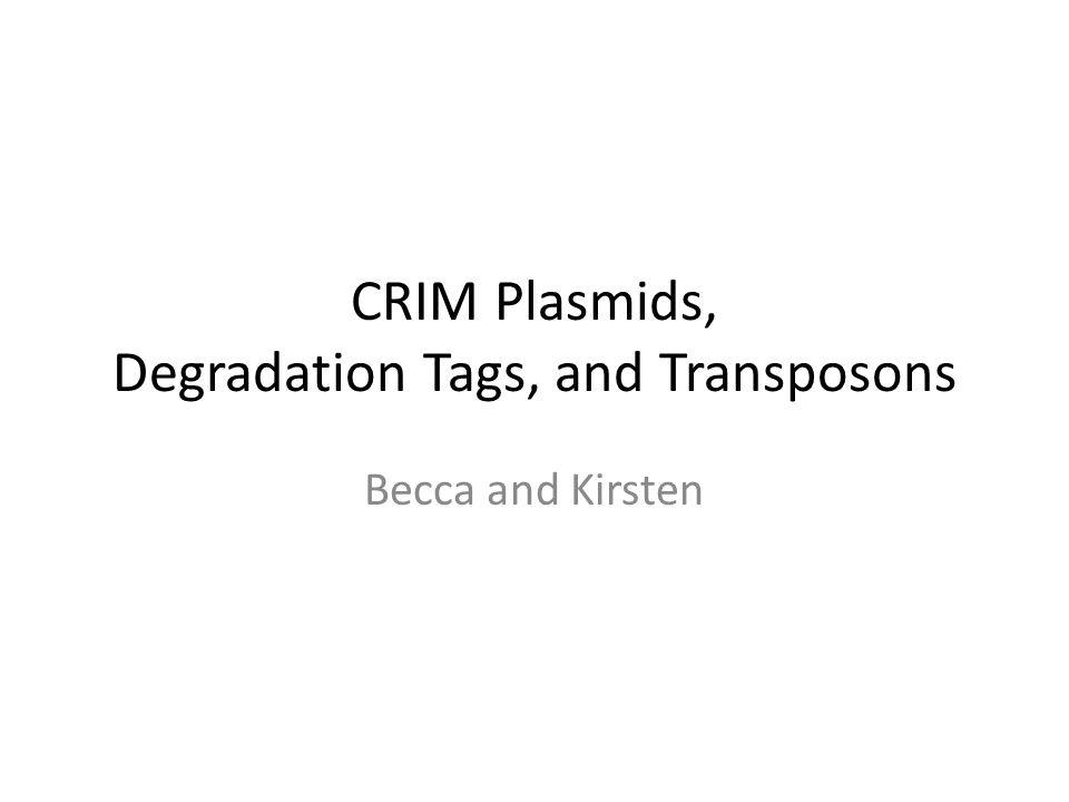 CRIM Plasmids, Degradation Tags, and Transposons