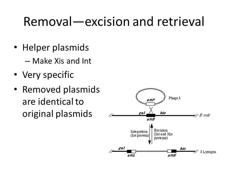Removal—excision and retrieval